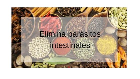suplementos para eliminar los parásitos del cuerpo